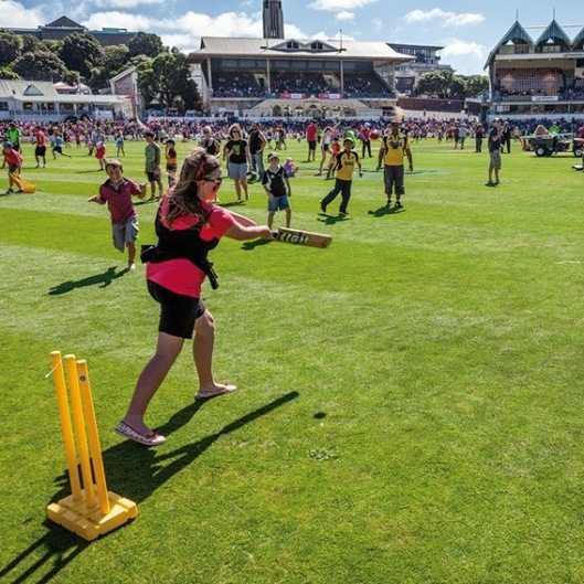 Kids playing cricket at the Basin Reserve